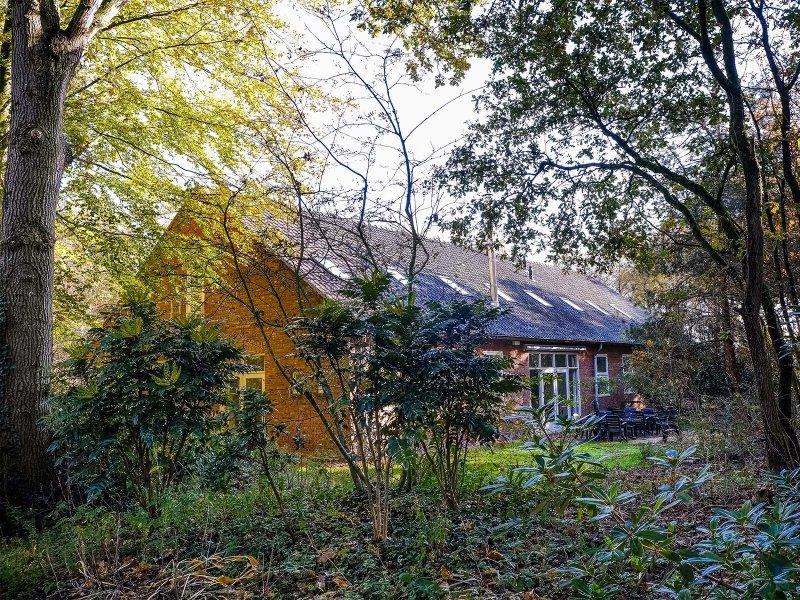 Het terras van Gebouw 1 ligt verscholen achter bomen en struiken.
