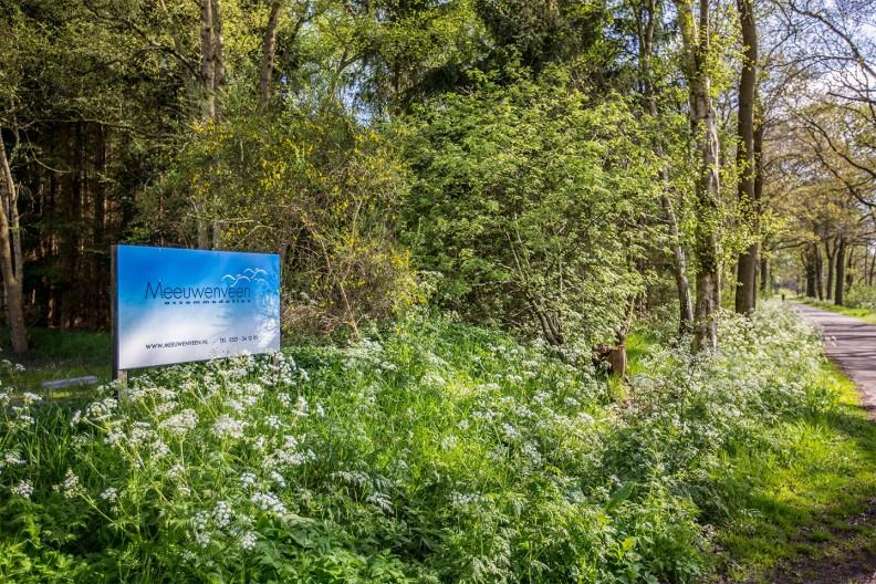 De weg langs Meeuwenveen Accommodaties